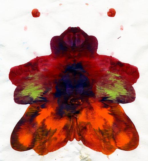 Papillon Noäm035